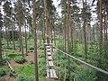 Go Ape Cannock Chase - Site 5 - panoramio.jpg