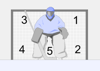 Goaltender - The holes on the goal.
