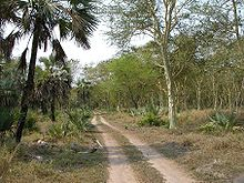 nationalpark gorongosa wikipedia. Black Bedroom Furniture Sets. Home Design Ideas