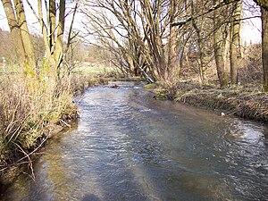Grafschaft (Lenne) - Grafschaft in Schmallenberg