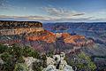 Grand Canyon Beauty.jpg