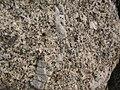 Granite Margeride.JPG