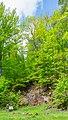 Granitporphyr von Thal Heiligenstein 01.jpg
