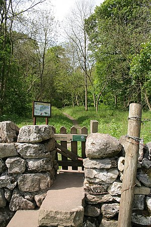 Grass Wood, Wharfedale - Stile into Grass Wood