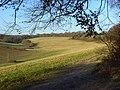 Grassland below Bellingdon - geograph.org.uk - 1081241.jpg