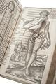 Gravid kvinna i boken Archidoxa, 1575 - Skoklosters slott - 102640.tif