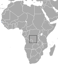 Greater Congo Shrew area.png