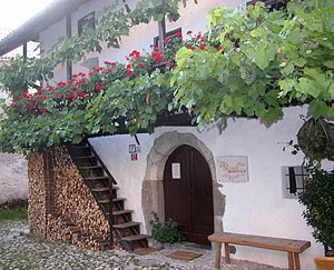 Simon Gregorčič - The house in which Simon Gregorčič was born