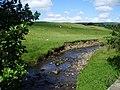 Greystoneley Brook - geograph.org.uk - 509552.jpg