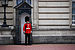 Guard of Buckingham Palace.JPG