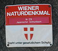 GuentherZ Naturdenkmal 276 2010-02-27 0139 Wien01 Stadtpark Japanischer Schnurbaum Plakette.jpg