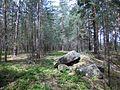 Höllberggipfel - panoramio.jpg