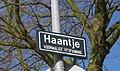 Haantje Rijswijk.jpg