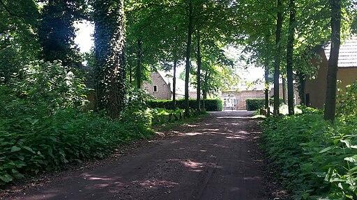 Haanwijk 3 september 2015