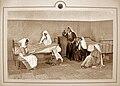 Hansen Disease asylum 5174.JPG