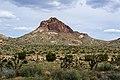 Hart Peak-Castle Mtn CA.jpg