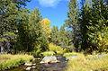 Hat Creek Colors (8098183250).jpg
