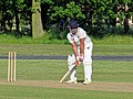 Hatfield Heath CC v. Netteswell CC on Hatfield Heath village green, Essex, England 22.jpg