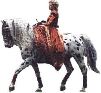 Knabstrupper - A Knabstrupper being ridden sidesaddle.