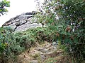 Heltor Rock - geograph.org.uk - 1400697.jpg