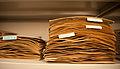 Herbarium - piles.jpg