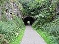 High Peak Trail - Hopton Tunnel - geograph.org.uk - 929591.jpg