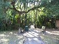 Highland Hammocks SP Swamp Trail01.jpg