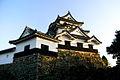 Hikone Castle (2094996482).jpg