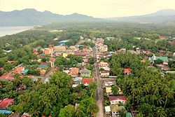 Aerial view of Hinunangan