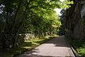 Hiyoshi-taisha06s4592.jpg