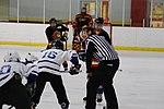 Hockey 20081019 (9) (2957570490).jpg