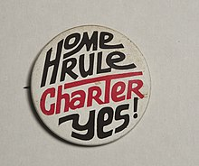 Washington District of Columbia 1974 Home Rule Charter Vote Campaign Button Seventies US Politics Shirt Washington DC