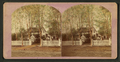 Home with a white picket fence and summer house, Geneseo, by Greene's Gallery.png