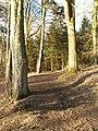 Horse track by Balbirnie - geograph.org.uk - 151946.jpg
