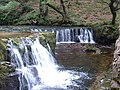 Horseshoe Falls - geograph.org.uk - 42404.jpg