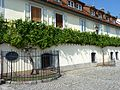 House of the oldest grapevine in the world (Hiša stare trte) in Maribor.jpg