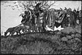 Howard Pyle - The Death of Siegfried.jpg