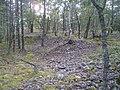 Hummelmoraberget, klapperstensvallar, 2015d.jpg
