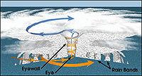 Hurricane structure graphic.jpg