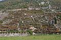 I secolari terrazzamenti della vite 06.jpg
