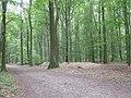 Im Krefelder Forstwald am Landwehrwall - geo.hlipp.de - 20354.jpg