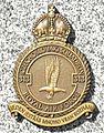Insignie.313.CS.perut.RAF.jpg