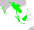 Irena puella map.PNG