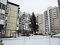 Irkutsk's Akademgorodok - panoramio (18).jpg
