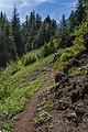 Iron Mountain Mark Gorzynski IMG 2294.jpg