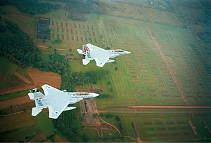 Israel–Poland relations - Israeli Air Force jets flying over Auschwitz concentration camp, 2003.