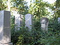 Israelitischer Friedhof Währing September 2006 013.jpg