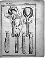 J. Casserius, Tabulae anatomicae LXXIXX Wellcome L0022378.jpg