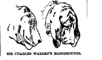 Police dog - Bloodhounds used by Sir Charles Warren to track down the serial killer Jack The Ripper in the 1880s.