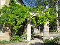 Jardin botanique Dijon 012.jpg